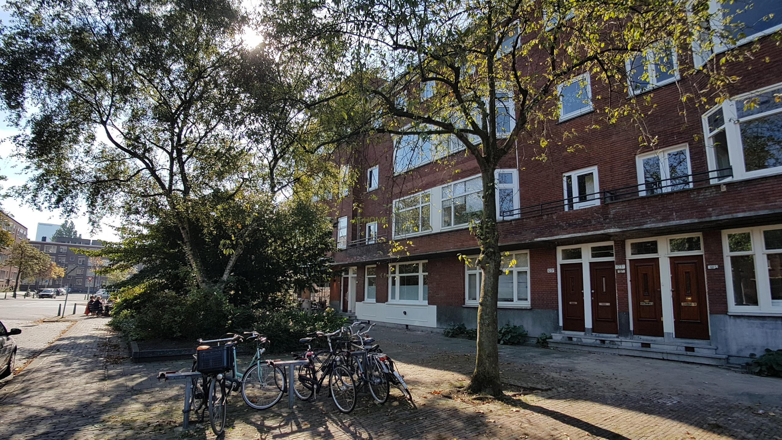 De Savornin Lohmanlaan, Rotterdam